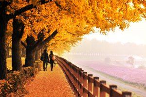 Tuyển sinh du học Nhật Bản kỳ tháng 10 năm 2020